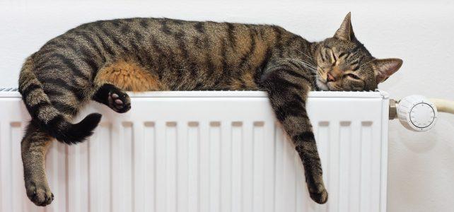 Instalador Calefacción Menorca